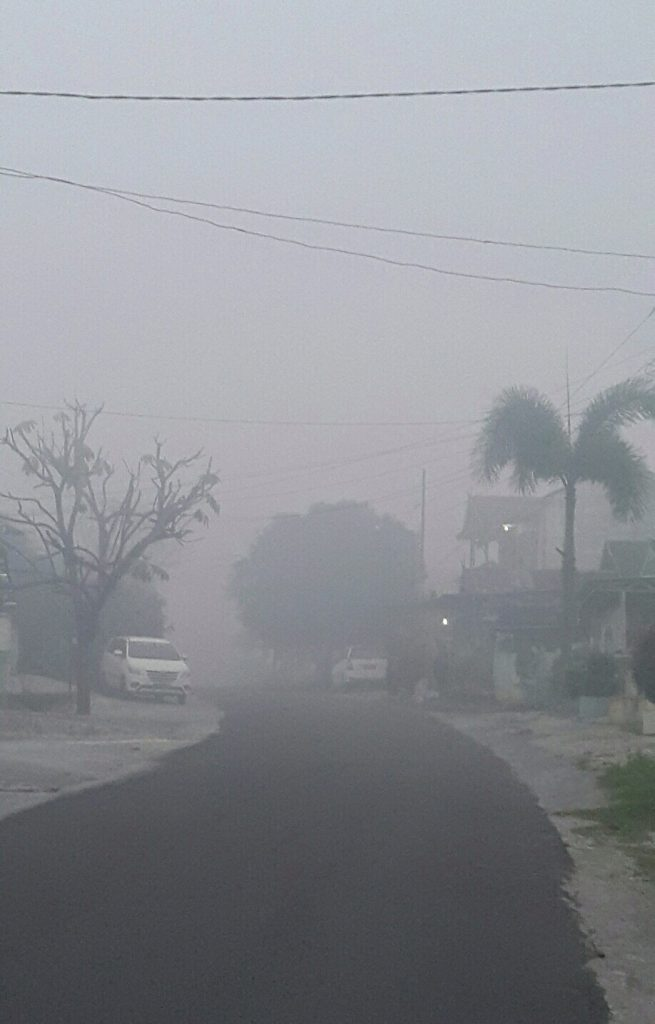 The Haze in Indonesia