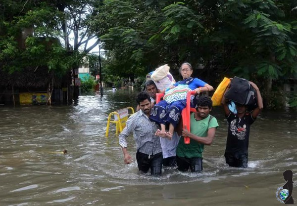 Chennai Flood Rescue