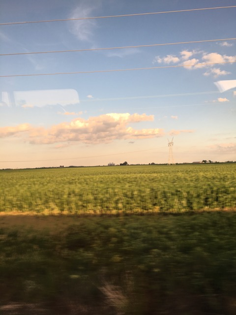 Rushing past rural cornfields in Missouri by train
