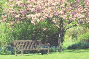 spring-garden-vintage-colors